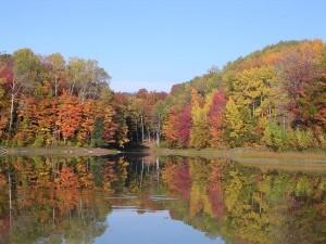 Green Lake - Fall